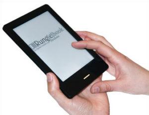 E-Book bei der RungeVA